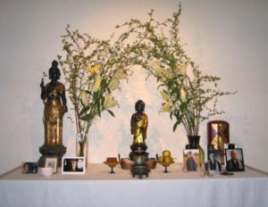 Buddhas Geburtstag